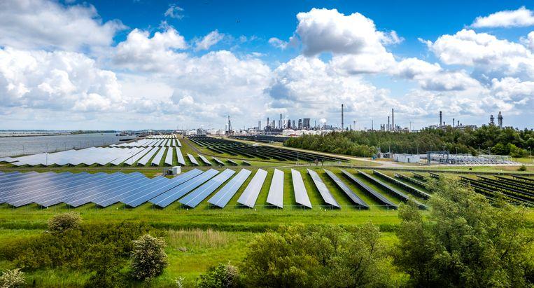 Zonnepanelen bij Shell Moerdijk.  Beeld Freek van den Bergh/VK