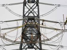 Liander zet rem op lokale elektriciteitsproductie in Neerijnen: het stroomnet is vol