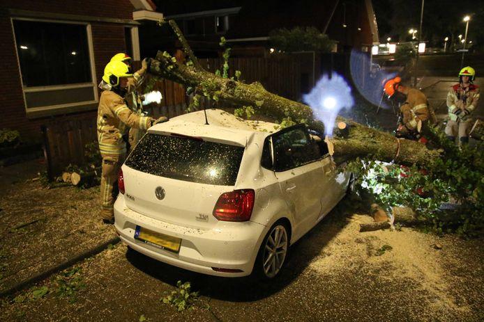 In de afgelopen nacht richtte de storm al veel schade aan, zoals hier bij een VW Polo in Rotterdam die door een boom is geraakt.