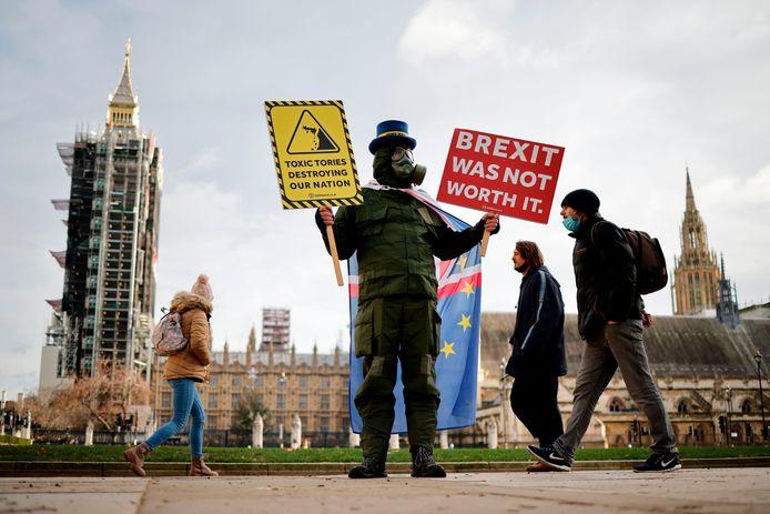 Tegenstander van brexit Steve Bray demonstreert bij het parlementsgebouw in Londen tegen de Britse uittreding uit de EU.