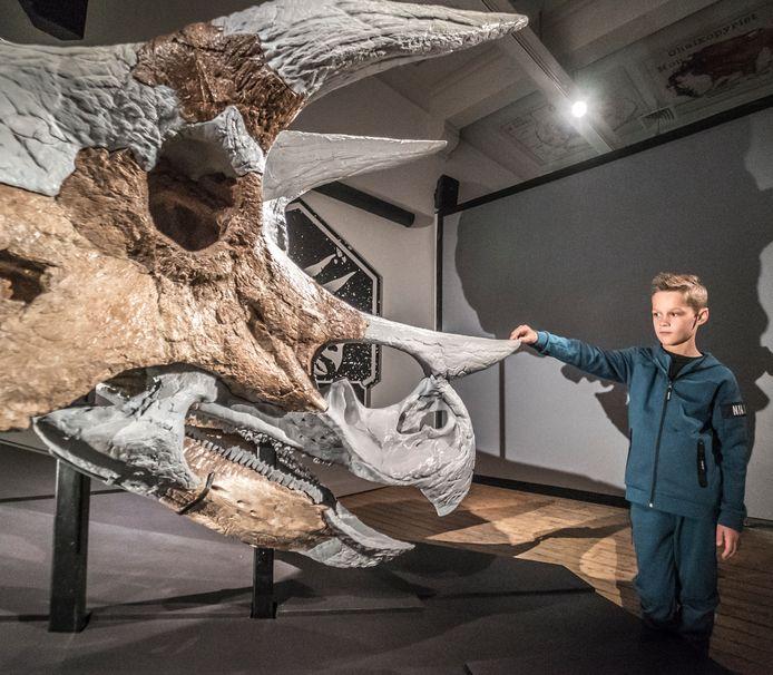 Jayden van Eck (9) is 1 van de eerste bezoekers van de dag om de triceratopskop te bewonderen