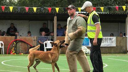 Quibus nationaal kampioen hondensport