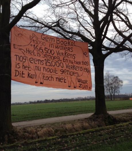 Ook buurt in geweer tegen bouw megastal voor 15.000 varkens in Venhorst