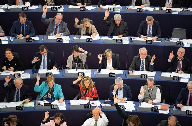 De leden van het Europees Parlement stemmen massaal voor het verbod. Beeld EPA