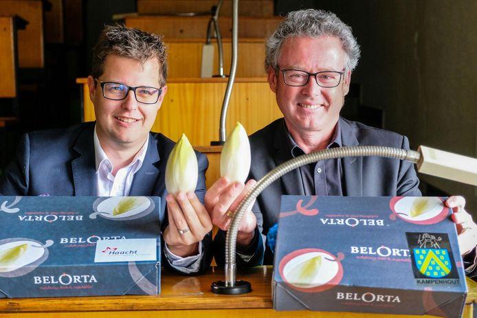 Samen op de banken van de voormalige verkoopzaal van de Kampenhoutse veiling, maar ieder wél met een doos van witloof van eigen bodem: Nico Bogaerts van Haacht en Kris Leaerts van Kampenhout.
