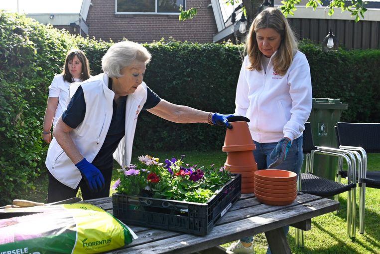 Prinses Beatrix steekt haar handen uit de mouwen tijdens NLdoet, georganiseerd door het Oranje Fonds. Veel ouderen blijven graag actief.  Beeld Brunopress