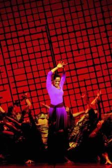 Originele cast Aida is terug: 'Het had geen sterren nodig, deze musical was al een ster op zichzelf'