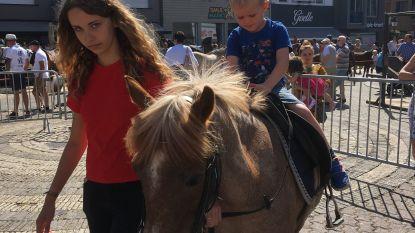 Torhout kort Paardenmarkt in door hitte