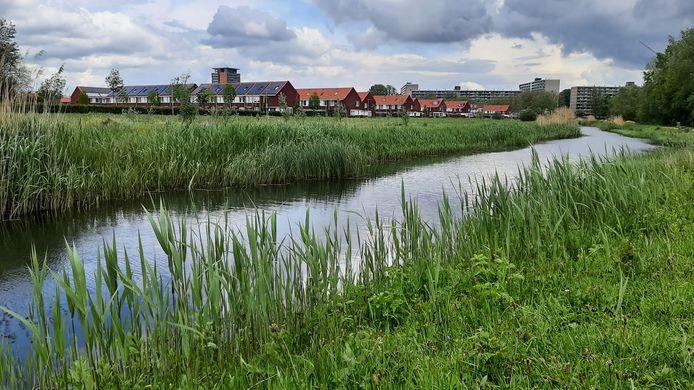 Zicht op de Whemedreef in de Arnhemse wijk Malburgen-Oost. Over het bouwplan voor de groenstrook bij de noordelijke Immerlooplas lopen de meningen uiteen.