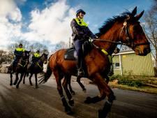 Vaker politie te paard in Stadshart vanwege onrust