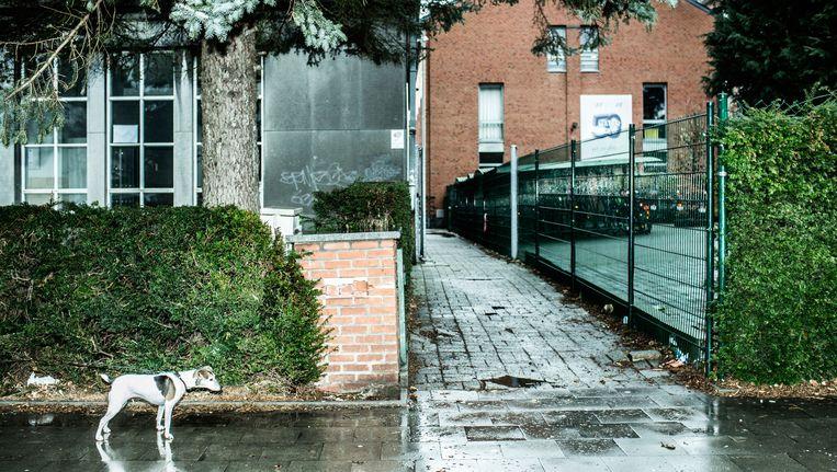 Het hek fungeert als taalgrens tussen het Lycée Mater Dei en het Mater Dei-instituut in Sint-Pieters-Woluwe. Beeld Franky Verdickt