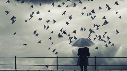 Heel wat regen en het kan stevig waaien: guur herfstweekend voor de boeg