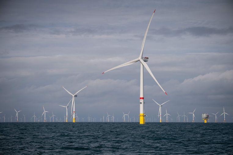Windmolens van Eneco voor de kust van Oostende.  Beeld AFP