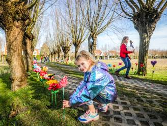 Zo eren ze in Knokke-Heist burgemeester Lippens: strandbloemen sieren oprijlaan naar zijn woning