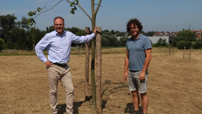 Regionaal Landschap en Sint-Pieters-Leeuw lanceren ideeënoproep voor inrichting nieuw Damiaanpark