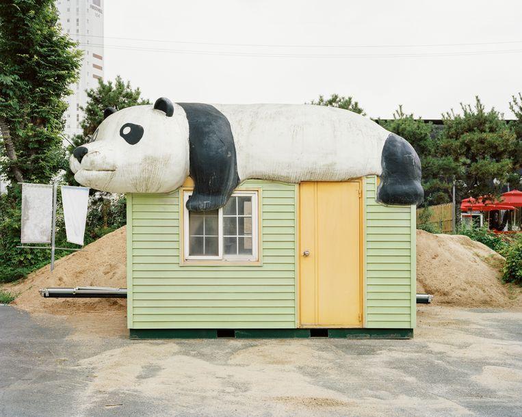 Zuid-Koreanen zijn dol op panda's.In entertainmentpark Everland kun je ze in levenden lijve aanschouwen.  Beeld Seunggu Kim/INSTITUTE