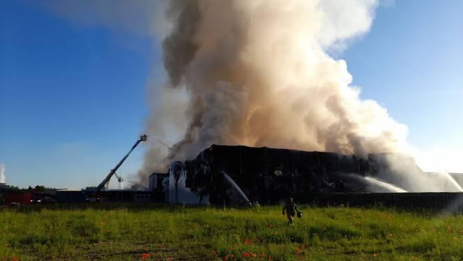 """Brand legt vleesverwerkingsbedrijf volledig in de as bij Gentse haven: """"Stukjes verbrand isolatiemateriaal tot in Oostakker en Gent"""""""