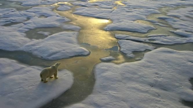 Smelten noordpoolijs complex proces: 'Kan leiden tot hete zomers en koude winters'