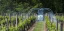 Het pesticidengebruik in de wijnindustrie ontmoet steeds meer weerstand. Het ecologisch bewustzijn bij de wijnboeren groeit.