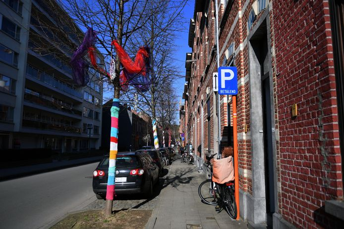 De bewoners van de J.P. Minckelersstraat versierden de bomen want ook daar is bezorgdheid over.