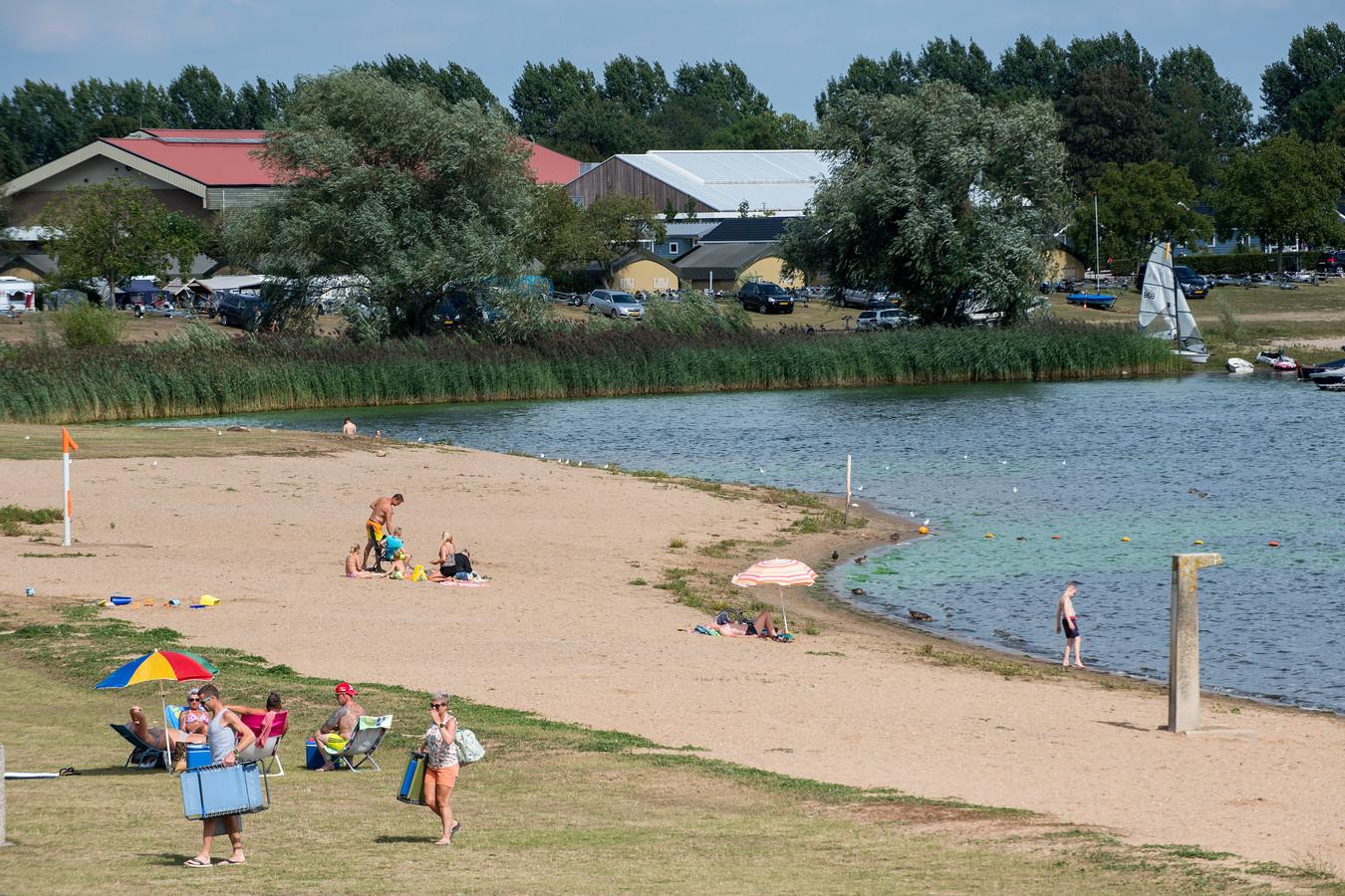 Blauwalg in het water van de recreatieplas Eiland van Maurik.