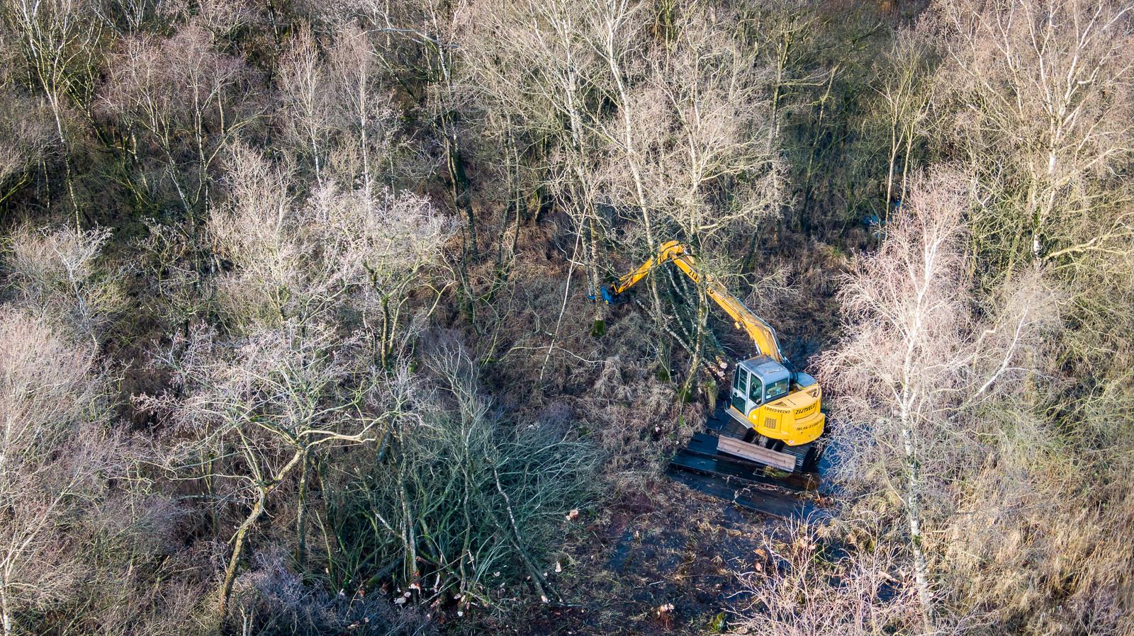 In natuurgebied De Weerribben is in de buurt van Wetering een begin gemaakt met het herstel van het veenmosrietland en het trilveen met het weghalen van bomen en andere opslag