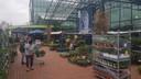 De snijbloemen- en plantenmarkt naast de ingang bij IntraTuin in Rosmalen.
