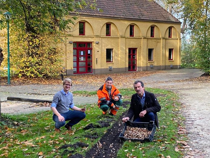 Het Kasteelpark wordt dankzij de nieuwe aanplanting een pak bijvriendelijker