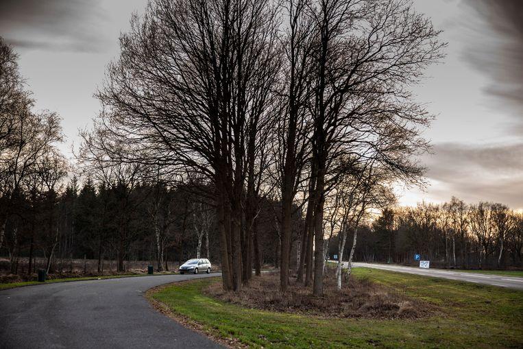 De N375 bij Ruinen en Koekange, waar de parkeerplaats is waar Lucy voor seks werd aangeboden.  Beeld Harry Cock/de Volkskrant