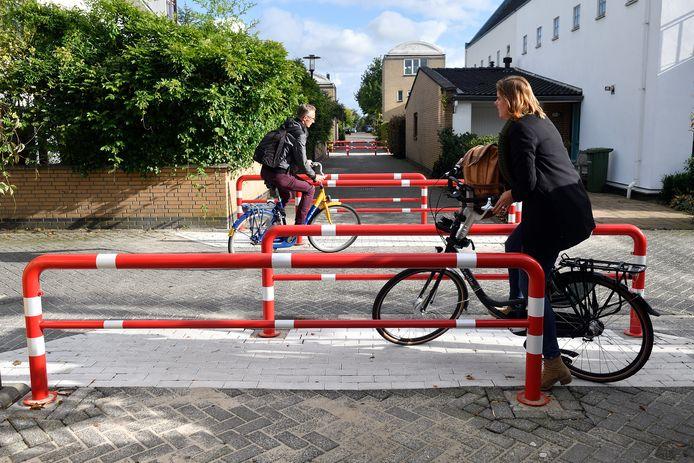 Aan De Delta werden in september 2017 vier roodwitte hekken geplaatst. Ze werden neergezet om fietsers af te remmen, maar veroorzaakten volgens omwonenden vooral problemen.