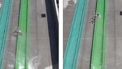 Jongen (10) vliegt uit enorme waterglijbaan in Californië