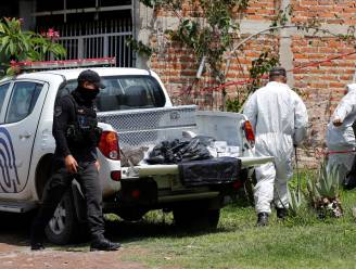Meer dan 100 lichamen gevonden in Mexicaans massagraf