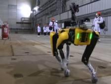 Un chien robot utilisé pour détecter la radioactivité à Tchernobyl