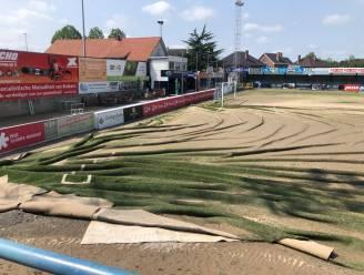 Enorm veel schade bij KVK Tienen na zware overstromingen: grasmat volledig verloren