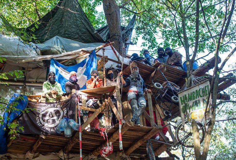 Activisten hebben zich verschanst in boomhutten. Verspreid over het Hambacherbos zijn er een zestigtal gebouwd. Beeld AFP