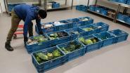 Voedseloverschotten gaan nu  naar mensen met minder