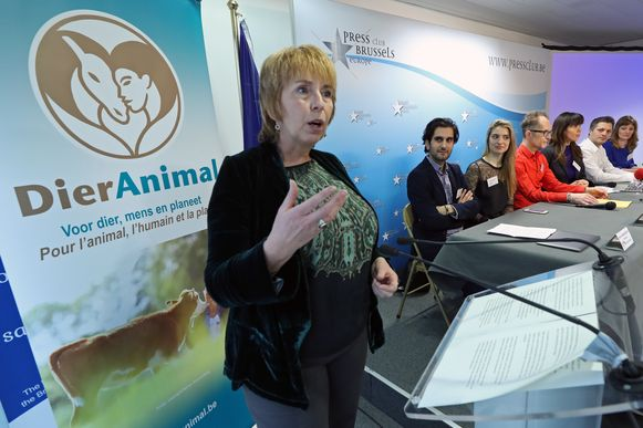 De nieuwe partij 'Dier Animal' werd vandaag voorgesteld in Brussel.