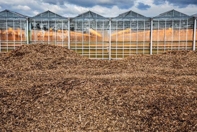 Houtsnippers voor een biomassacentrale