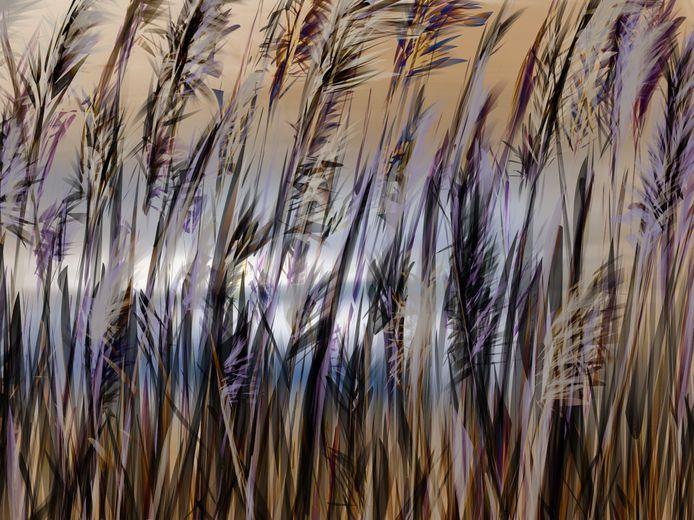 Een op de iPad gemaakt werk van Anneke Wasser, te zien in haar expositie 'Grensland'.