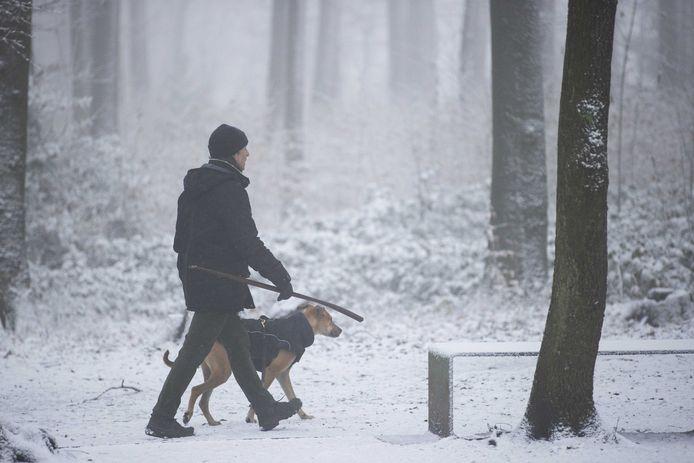Een wandelaar met hond door de sneeuw.