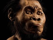 L'être humain a un nouvel ancêtre