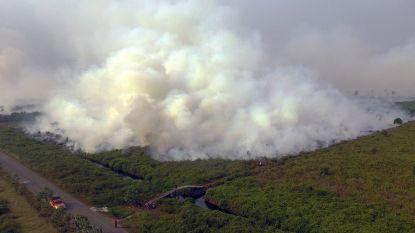 185 arrestaties om enorme bosbranden in Indonesië, luchtkwaliteit gevaarlijk ongezond