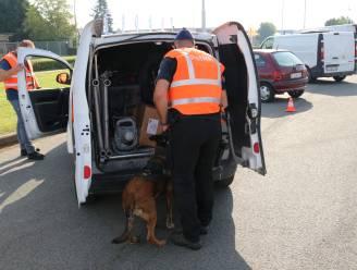 """Politie Dendermonde houdt grootscheepse controle op Hoogveld: """"Meer dan 20.000 euro aan achterstallige belastingen geïnd"""""""