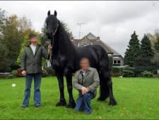 Wie is paardenman Jan B. die grootste cocaïnewasserij van Nederland in zijn manege had?