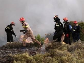 Bosbranden treffen Griekse vakantie-eiland Zakynthos