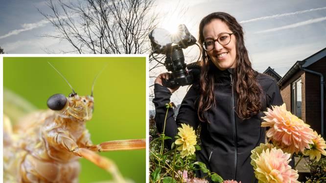 Een naam die helemaal niet klopt: het leven van eendagsvlieg kan jaren duren