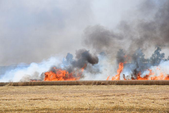 3000 vierkante meter tarweveld is afgebrand in Nieuwerkerk.