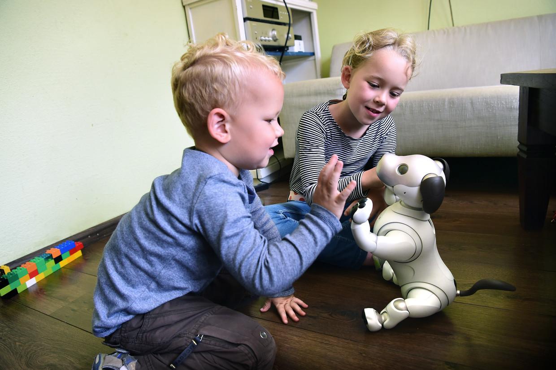 De robothond Aibo leert gaandeweg het 'baasje' herkennen en ontwikkelt een eigen karakter, belooft de fabrikant.  Beeld Marcel van den Bergh