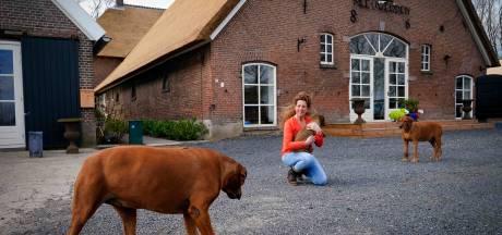 Sabine zet de deuren van haar zorgboerderij open: 'Luisteren en helpen is mijn passie'
