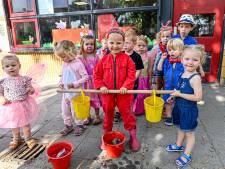Boerderijfeest in Steenbergen als afsluiting van het schooljaar: 'Ze leren dat melk van een koe komt'